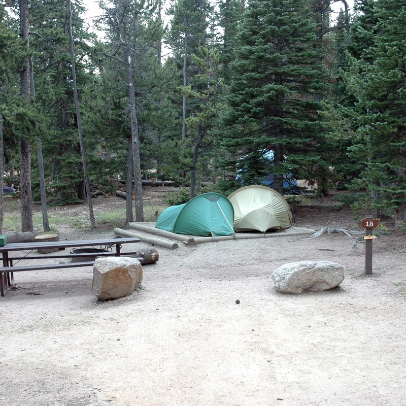 Two tents site in a large wooded campsite