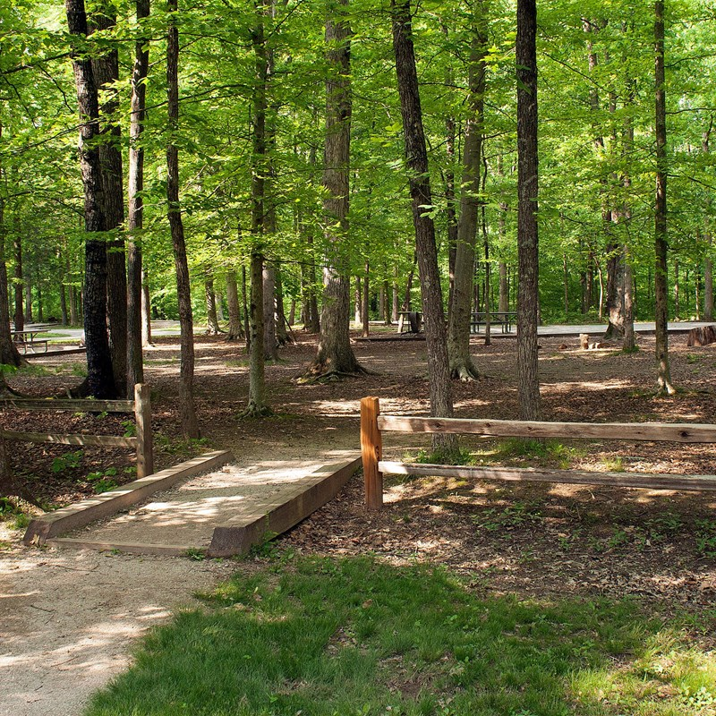 Mammoth Cave Campground Mammoth Cave National Park U S