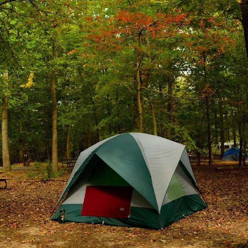 Campground Reservations - Greenbelt Park (U.S. National Park Service)