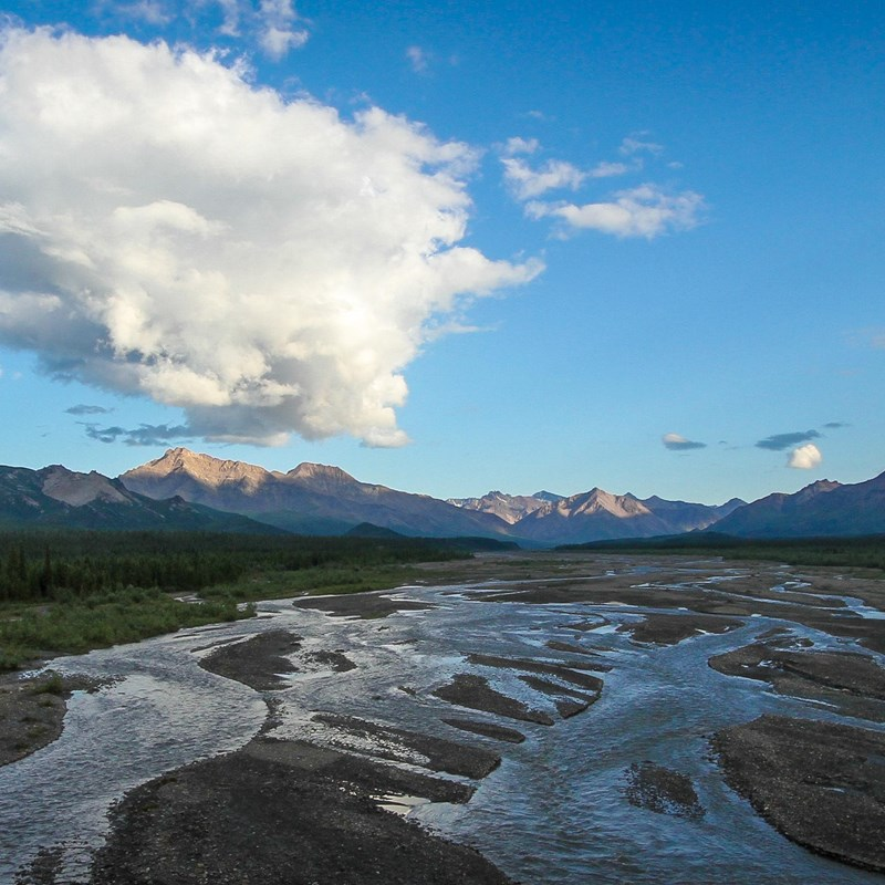 Teklanika River Campground Denali National Park