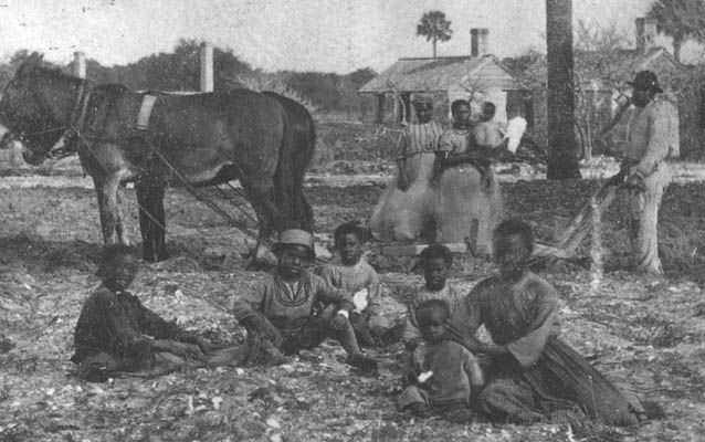 the lives of slave children in the antebellum south One may infer that it was quite common in antebellum households to have white children and white slave children who all travelers who spoke of white slaves in the south it was becoming customary to hold african servants as slaves for life, and by 1681 what was.