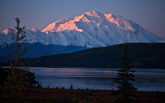 Image of Mount McKinley, tinged pink with alpenglow, with