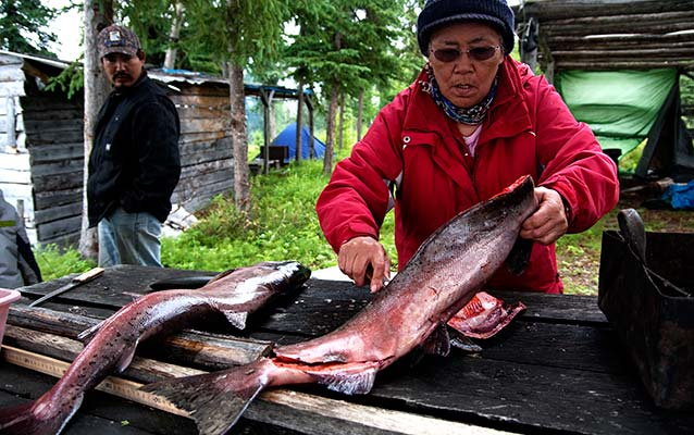 Native Alaskan filleting a fish