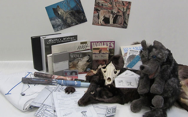 Shows wolf puppet, hide, skull, books and other materials in the kit.