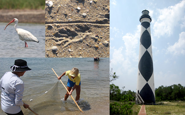 Activities include Field Study, Track Collecting, & Lighthouse History