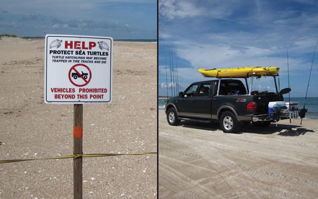 Sea Turtle Nest Closure and Beach Driving