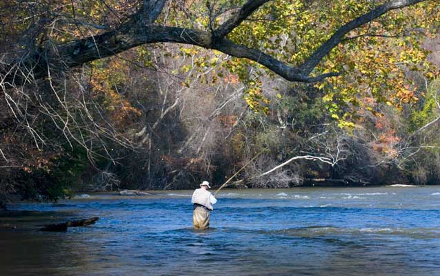 Fisherman knee deep in the Chattahoochee River with autumn leaves falling.