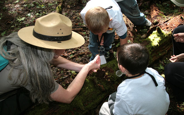 Students explore life on a log as part of their Kindergarten field trip in the Smokies.