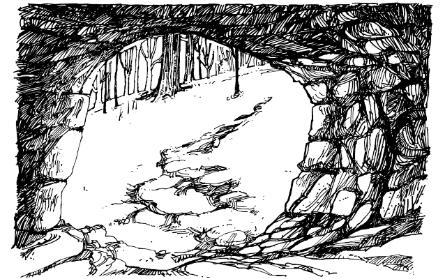 A cave scene, looking outward