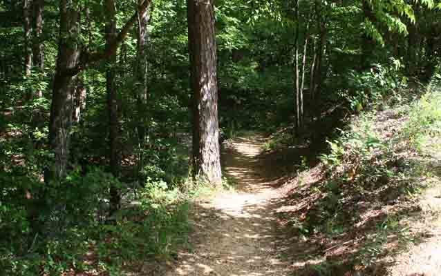 a worn path eudora welty lesson plan natchez trace parkway  a worn path at dogwood valley