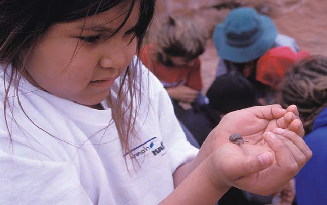 student examines a snail