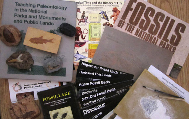 fossil education kit contents
