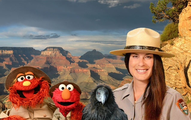 (left to right) Murray and Elmo from Sesame Street, a California condor and Park Ranger Amala standing in front of the Grand Canyon.