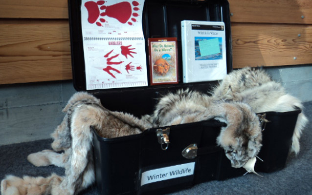 Contents of Winter Wildlife Traveling Trunk