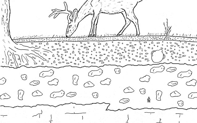 coloring pages rocks soil water | Soil Layers Activity Coloring Pages