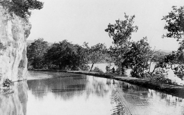 An historic black and white image from the canal boat looking at the towpath and the mules.
