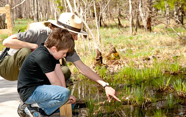 A ranger helps point out a bull frog in the marsh.