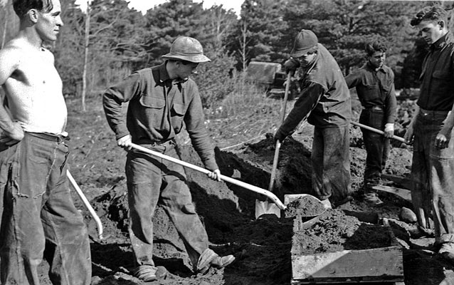 Civilian Conservation Corps boys work in the park.
