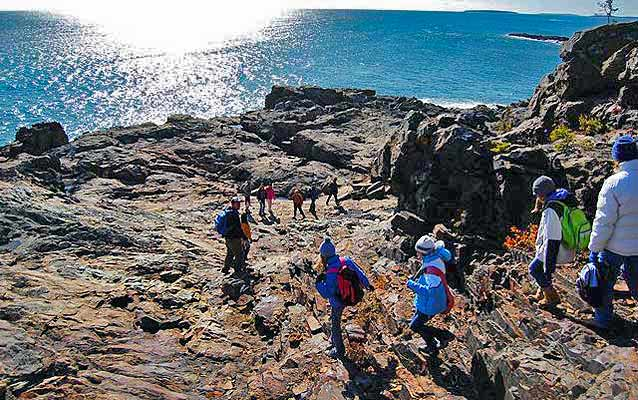 Students examine rocks along the coast of Acadia National Park.