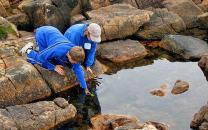 Two students bend over to look at intertidal creatures closer.