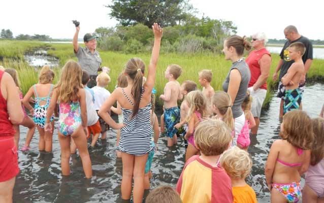 Students explore the marsh to learn about food webs