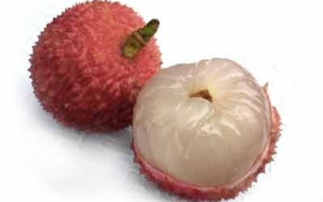 The lychee fruit looks like a berry with a hard scaly reddish outer covering and sweet whitish edible flesh (that surrounds a single large seed).