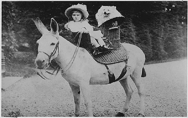FDR on mule as a boy