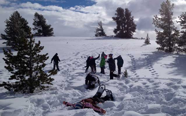 Kids on a hillside, playing in the snow.