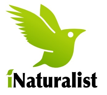 BioBlitz: iNaturalist - Teachers (U.S. National Park Service)