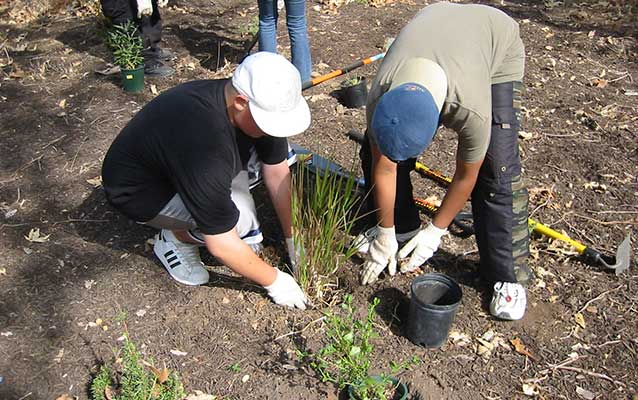 Students help restore park landscapes with native plants