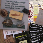 Fossil Education Kit