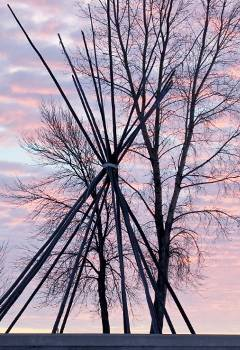 The frame of a teepee and a leafless tree against a pink sky at sunset.