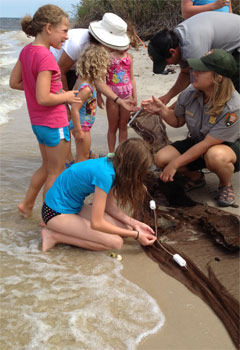 Children explore the catch of the day while seining at Watch Hill.
