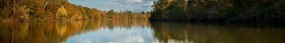 Fall colors along the Congaree River.