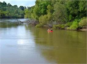 Paddlers enjoying a trip down the Congaree River