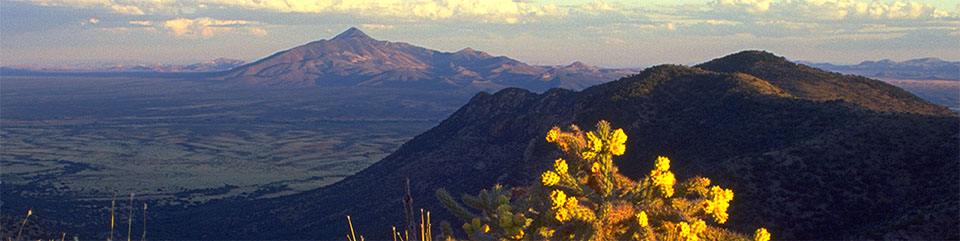 San Pedro River Valley from Montezuma Peak - D. Bly