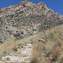 Stone stairs on a trail with a rocky mountain peak in the background
