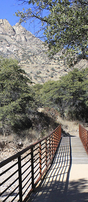 Footbridge over dry creekbed