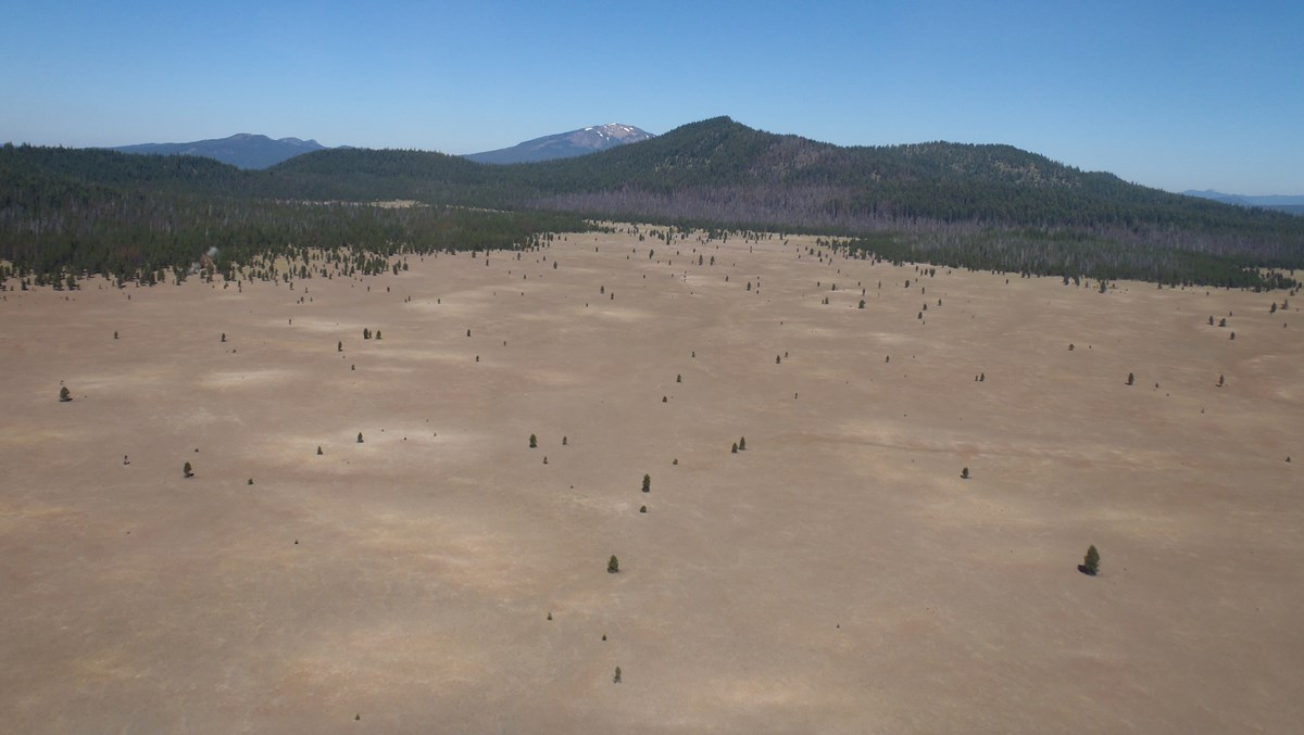 Aerial view of Pumice Desert