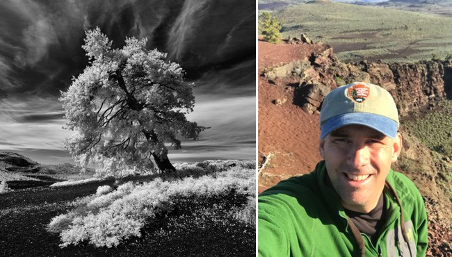 Limber Pine on Inferno Cone (left) and David Hunter selfie in the field (right)