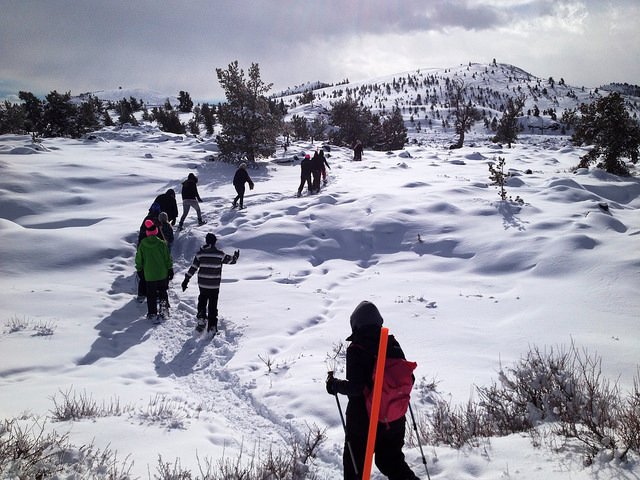 kids on snowshoes