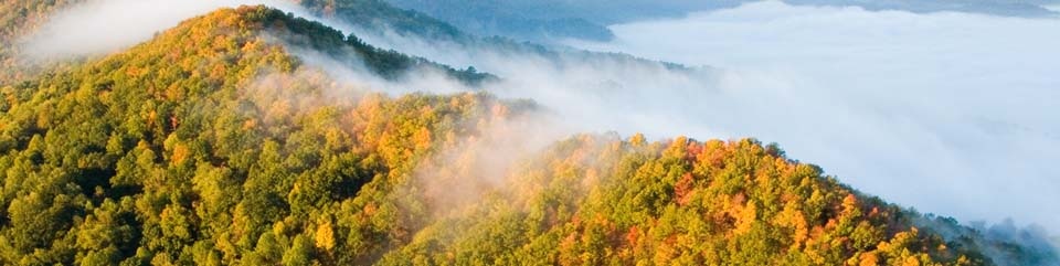 fog flows through Cumberland Gap