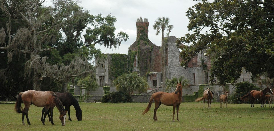 Several horses graze in front of mansion ruins
