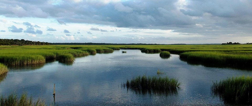 water filled marsh with bright green marsh grass, under cloudy sky