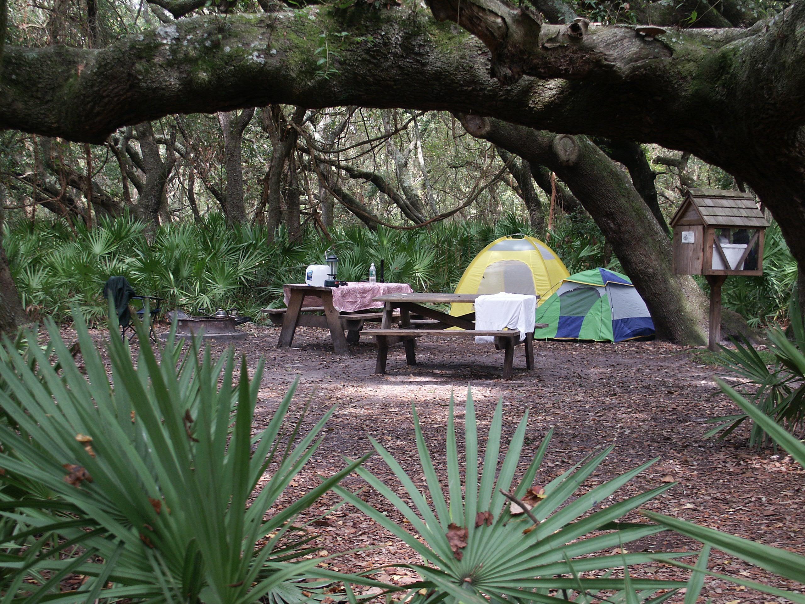 CUIS-camp-site.jpg