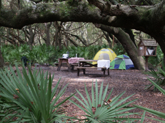 campground with tents, picnic table, and fire ring