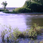 Discover the Gunnison River