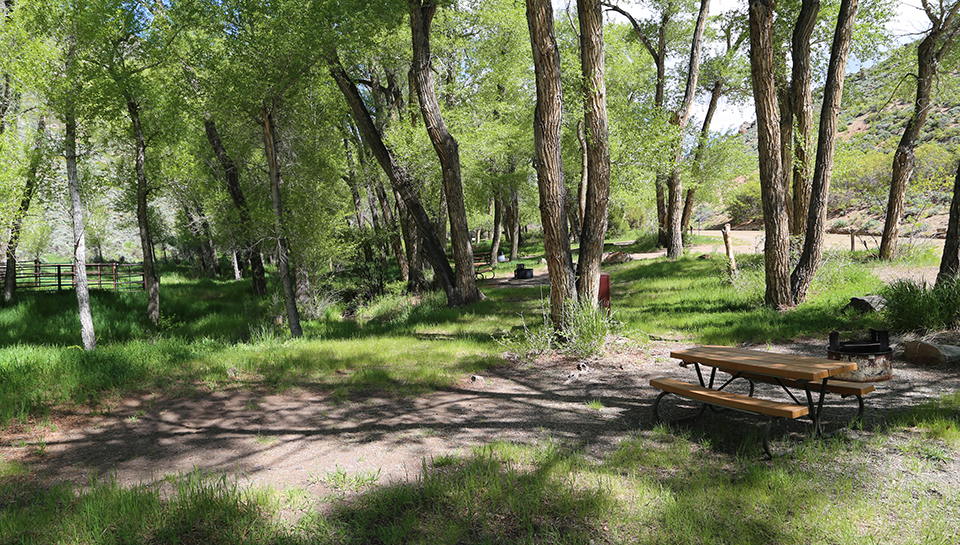 Dry Gulch Campground Curecanti National Recreation Area