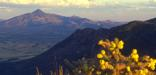 San Pedro River Valley from Montezuma Peak - D. Bly