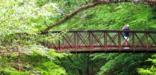 Birder on Village Creek Bridge in Turkey Creek Unit